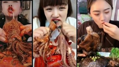 Photo of Chinese city bans eating of dogs, snakes, frogs and cats in the wake of Coronavirus pandemic